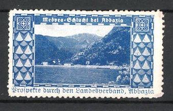 Reklamemarke Medvea-Schlucht, Landschaftspanorama, Landesverband Abbazia, blau