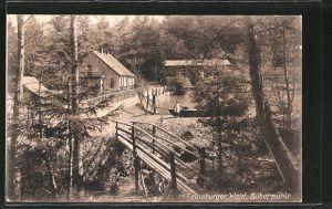 AK Leopoldstal, Gasthaus Silbermühle im Teutoburgerwald