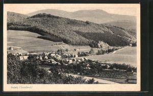 AK Bestwig, Ortspartie im Gebirge