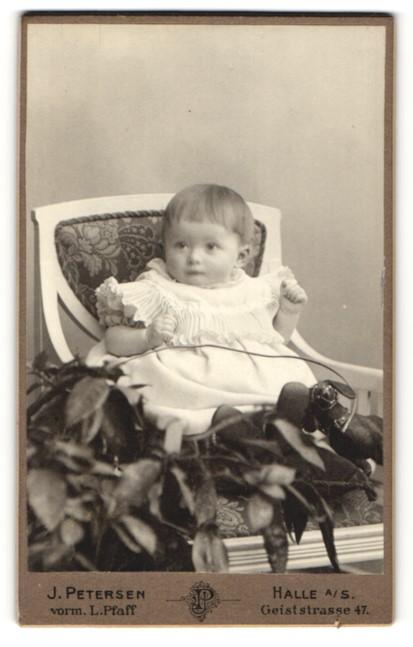 Fotografie J. Petersen, Halle a/S, Portrait Kleinkind mit Spielzeughund