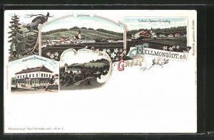 Lithographie Hellmonsödt, Jagdschloss Hahnenort, Wildberg, Luftkurort Kirchschlag