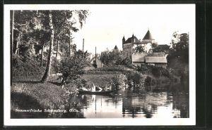 AK Schwertberg, Motiv vom Schloss