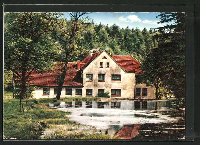 AK Horn-Bad Meinberg, Totalansicht auf Waldgaststätte Kattenmühle