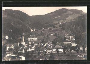 AK Wattwil, Totalansicht aus der Vogelschau