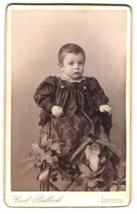 Fotografie Carl Bellach, Leipzig, Portrait Kleinkind in kariertem Kleid