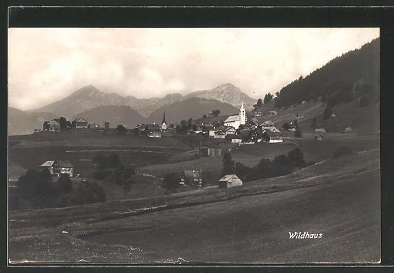 AK Wildhaus, Ortsansicht aus der Ferne
