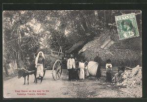 AK Colombo, Road Scene on the way to the Kelanlya Temple