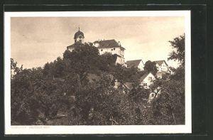AK Grüningen, Blick zum Schloss