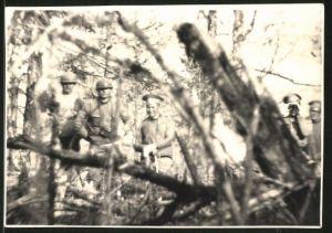 Fotografie 1.WK, Trupp russische Soldaten fotografiert aus dem Unterholz von einem deutschen Vorposten