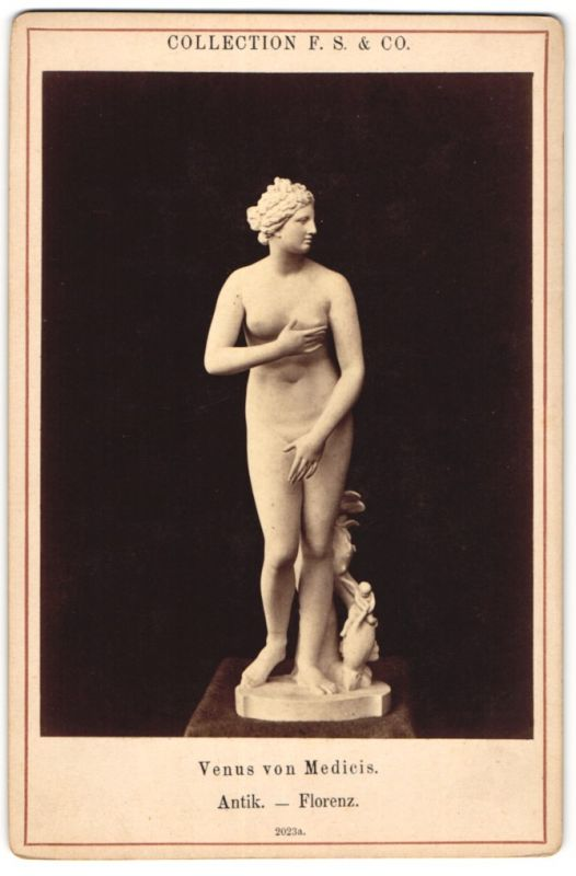Fotografie Collection F. S. & Co., antike Figur von unbekanntem Künstler, Venus von Medici, Florenz