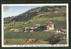 AK Sörenberg, Gesamtansicht