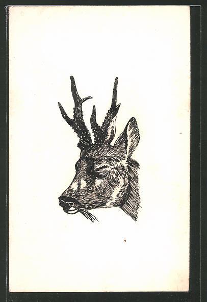 Künstler-AK Handgemalt: Kopf eines Rehbockes