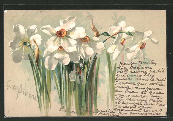Künstler-AK Clara von Sivers: Blühende Narzissen