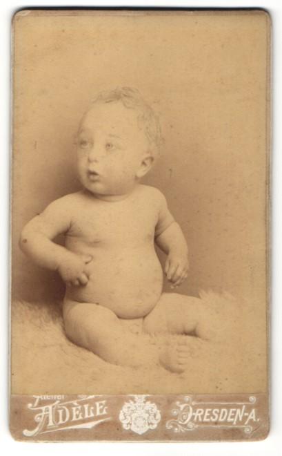 Adele Dresden fotografie atelier adèle dresden a säugling auf einem schaffell