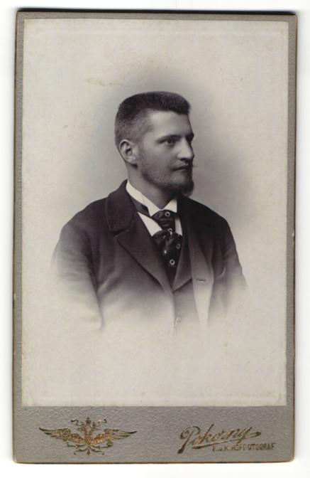 Fotografie Pokorny, Wien, Portrait junger Mann mit Vollbart
