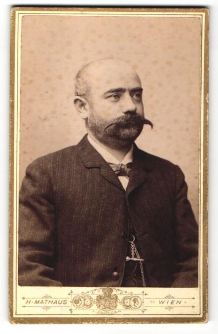 Fotografie H. Mathaus, Wien, Portrait Herr in Anzug mit imposantem Schnauzbart