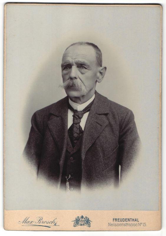 Fotografie Max Brosch, Freudenthal, Portrait Edelmann im Anzug mit Krawatte