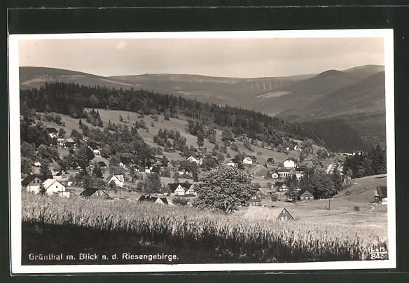 AK Grünthal, Ortspanorama vom Berg aus gesehen