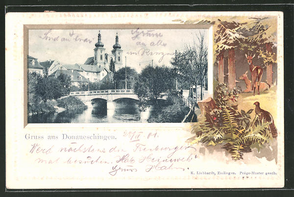 Passepartout-Lithographie Donaueschingen, Partie am Fluss mit Blick zur Kirche