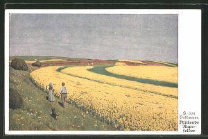 Künstler-AK Hans von Volkmann: Blühende Rapsfelder