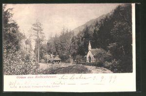 AK Kaltenbrunn, Ortspartie