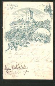 Vorläufer-Lithographie 1895, Blick auf die Wartburg, Ganzsache, PP9 F400/01