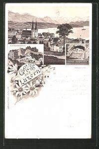 Lithographie Luzern, Totalansicht, Löwendenkmal, Gletschergarten
