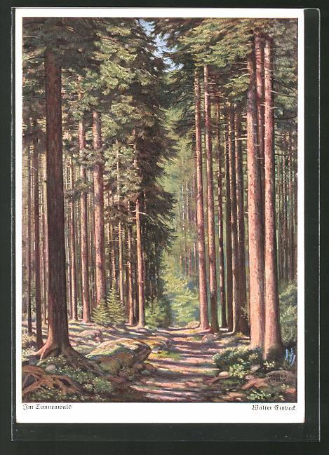 Künstler-AK Walter Einbeck: Im Tannewald, Landschaft