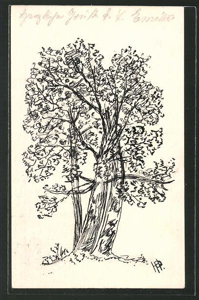 Künstler-AK Handgemalt: Federzeichnung eines Laubbaumes