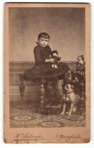 Fotografie H. Seeburger, Burgstädt i. S., Mädchen mit Hund spielt mit ihrer Puppe