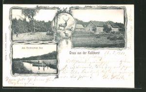 AK Neustrelitz, Forsthaus Kalkhorst, Rothtannen, Am Trebbower See
