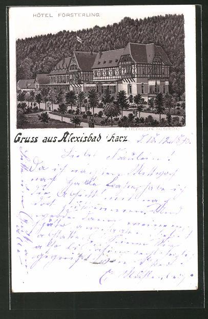 Lithographie Alexisbad, Hotel Försterling mit Anlagen