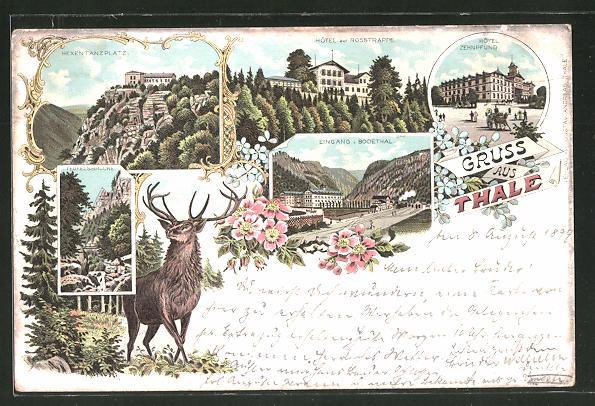 Lithographie Thale, Hotel zur Rosstrappe, Hotel Zehnpfund, Hexentanzplatz, Hirsch
