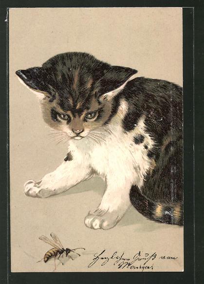 Präge-Lithographie Kätzchen und Wespe