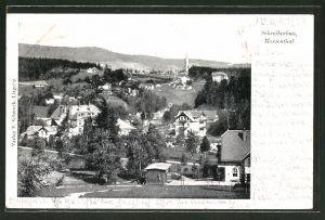 AK Schreiberhau-Marienthal, Ortspanorama vom Berg aus gesehen