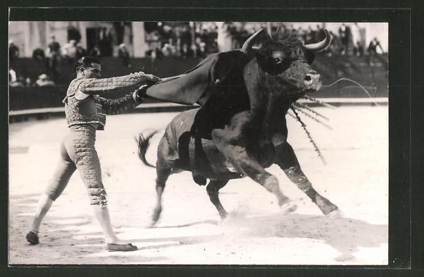 Foto-AK Stierkampf, Torero mit dem Stier
