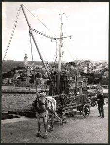 Fotografie Fotograf unbekannt, Ansicht Novi Vinodolski, Mann mit Pferdefuhrwerk im Hafen