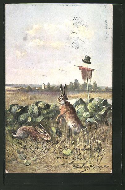 Künstler-AK M. Müller jun.: Hasen am Salatbeet mit Vogelscheuche