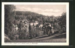 AK Schreiberhau, Ortspanorama vom Berg aus gesehen