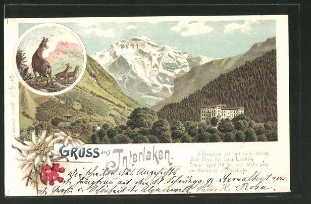 Lithographie Interlaken, Gasthaus