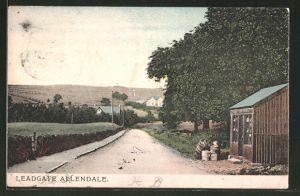 AK Leadgate Allendale, Blick in eine Strasse