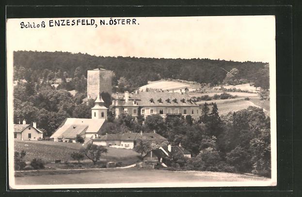 Foto-AK Enzesfeld, Blick zum Schloss