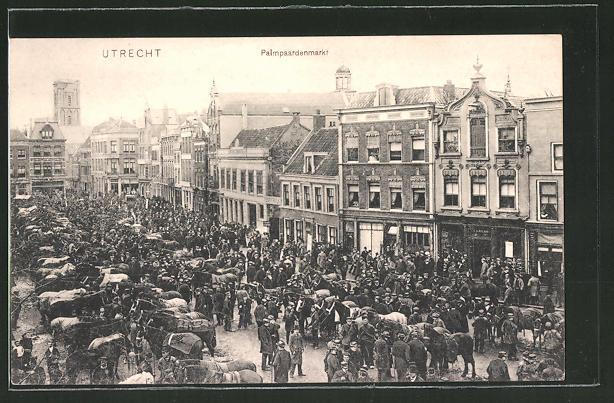 AK Utrecht, Pampaardenmarkt, Pferdemarkt, Marktszene