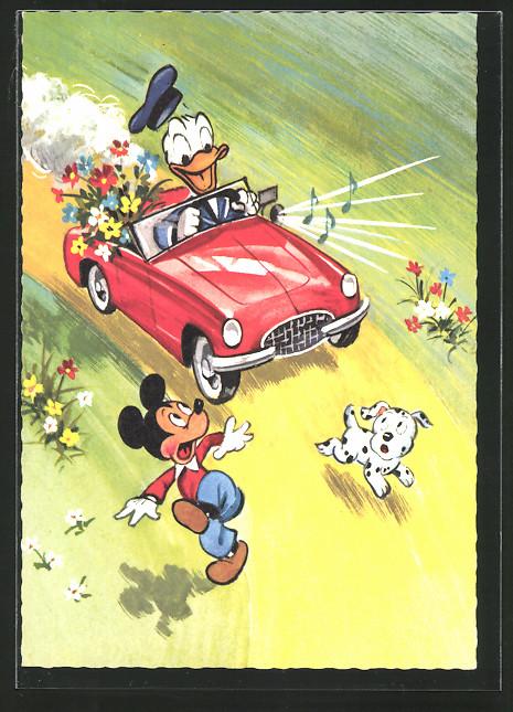 AK Donald Duck hat nicht vor mit seinen roten Flitzer zu bremsen und überfährt beinahe Micky Maus, Walt Disney Comic
