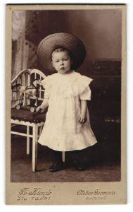 Fotografie Fr. Kienzle, Stuttgart, Portrait Kleinkind mit Spielzeugpferd, Holzspielzeug