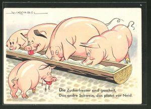 Künstler-AK Die Zuckerfresser sind gescheit, das andre Schwein, das platzt vor Neid, Futtermittel, Zuckerrüben
