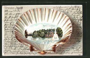 Passepartout-Lithographie Dresden, Ansicht vom Carolasee auf Muschel