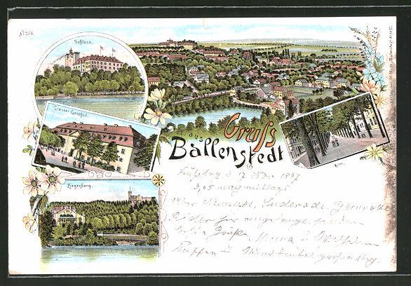 Lithographie Ballenstedt, Grosser Gasthof, Ziegenberg, Schloss