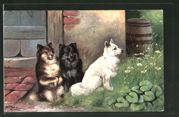 Künstler-AK Alfred Schönian: drei verschiedene Spitze