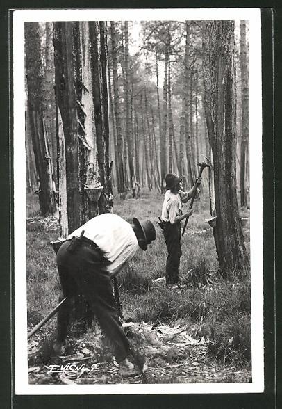 AK Au Soleil des Landes, Gemmeurs faisant l'entaille, Waldarbeiter